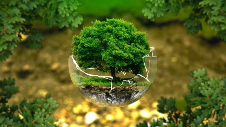 Dita Botrore e Mjedisit
